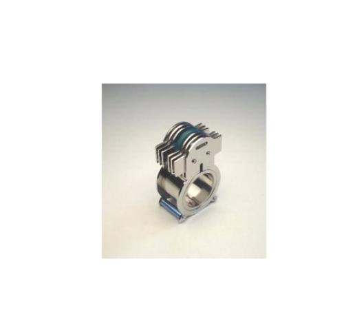 """Si chiama """"Super Mario"""" l'anello di Bernard François dedicato a Pinton"""