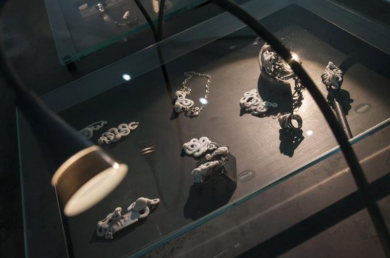 La mostra Evoluta a Caserta