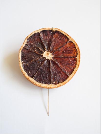Spilla Veggie, Yael Fiedman, arancia e ottone